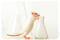 mouse with beaker